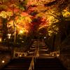 紅葉への階段