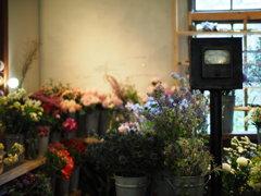 花屋の回転毎分