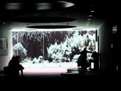 森のピアノレッスン