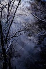 幻想の森 Vol.1