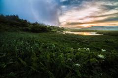 八島湿原の朝 Ⅱ