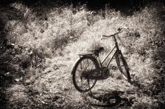 Bicycle at ・・・