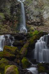 千ヶ滝の流木