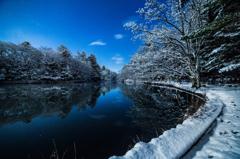 冬の月夜の雲場池