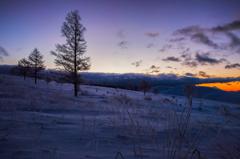 Twilight Morning