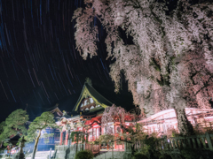久遠寺の夜桜と星空輪廻