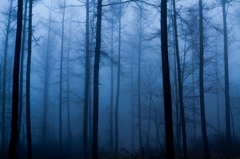 Morning Blue ~ Fresh air ~