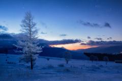 眠りから覚める樹氷