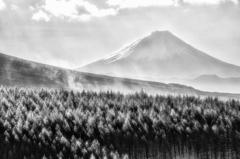 白天の富士