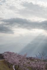 駒ヶ岳の一場面