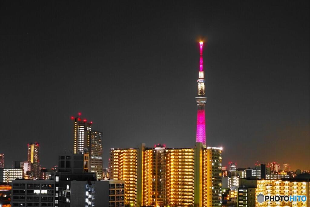 3.11 追悼特別ライティング~③