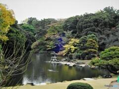 新宿御苑~下の池