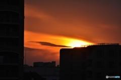 隅田川からの夕焼け。