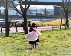 桜色の姉妹