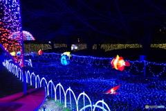 光の祭典2017-③