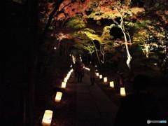 円通院ライトアップ~③