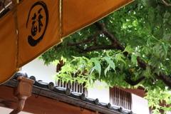 「ふくすけ」の暖簾
