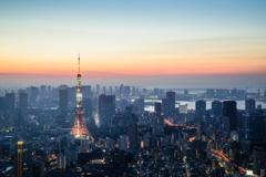 Tokyo Skyline At Dawn