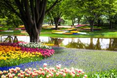昭和の花園