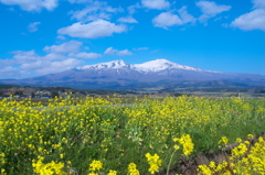 遊佐町からの鳥海山