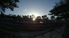 車窓の夕日