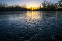 印旛沼 朝日と薄氷-3