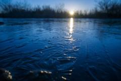 印旛沼 朝日と薄氷