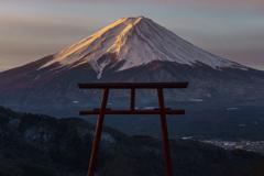 富士三昧689