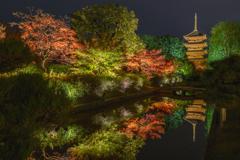 京都紅葉2019―⑩