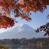 富士三昧379