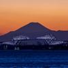 富士三昧282