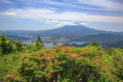 富士三昧618