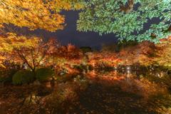 京都紅葉-⑦