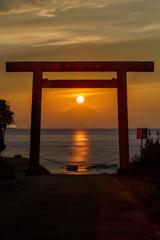 富士三昧691