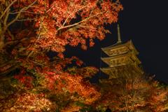 京都紅葉-⑧
