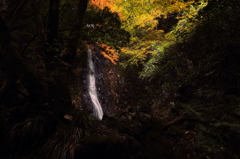 Autumn Waterfall 2