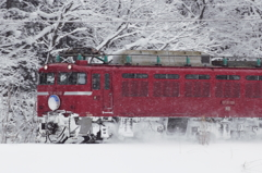 Powder Snow Runner