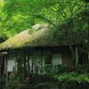 苔むす藁葺き