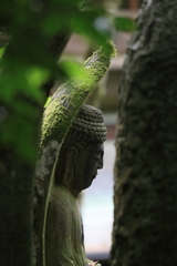 仏様の横顔