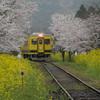 春雨のローカル線