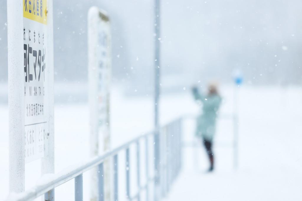 綿雪のメロディー♪