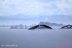 雪に埋もれたハウスと鳥海山