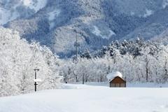 小さな雪ぼうし