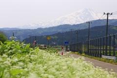 鳥海山とわくわく電車