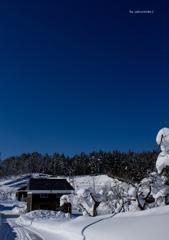 林檎畑と洋館のある風景