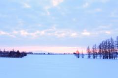 雪原の朝~空色に染まる~