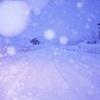 まあるい雪の日