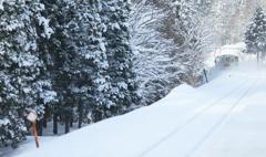 ふっかふかの雪だよ♪