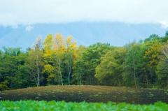 岩手山の麓風景