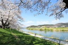 君と歩く散歩道 ~白石一目千本桜~